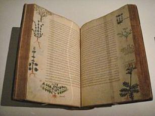 Dioscorides De Materia Medica Byzantium 15th century