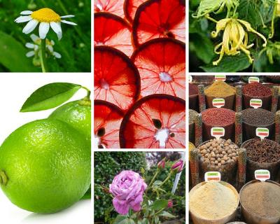 Essential oil scents for celebration