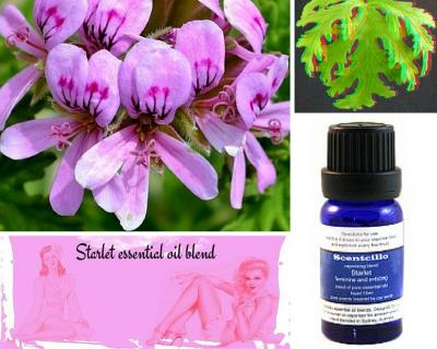 Starlet essential oil blend - feminine and enticing