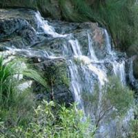 Waterfall in Queensland rainforest.
