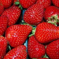 Strawberry3500px